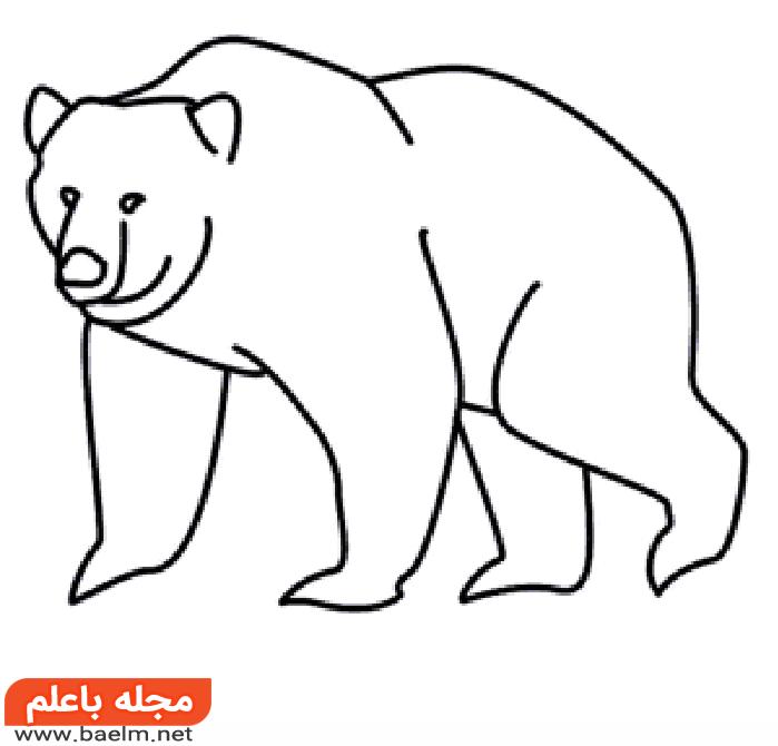 کشیدن نقاشی خرس , آموزش کشیدن نقاشی خرس به صورت تصویری