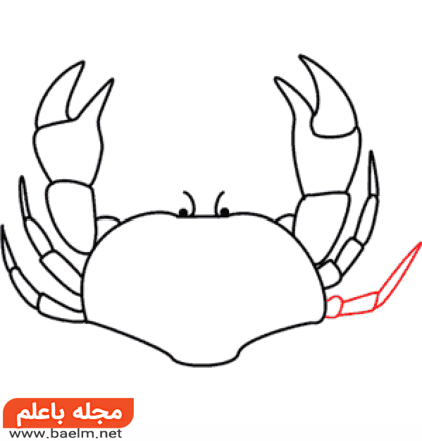 آموزش نقاشی خرچنگ,آموزش گام به گام نقاشی خرچنگ8