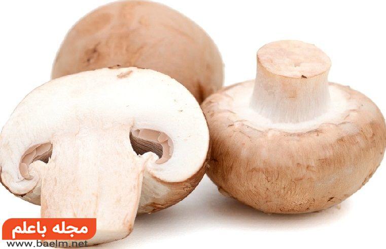 خواص داروئی قارچ,چه کسانی نباید قارچ بخورند؟
