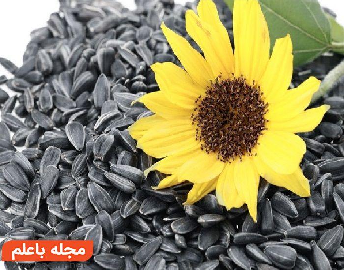 مراقبت از پوست در تابستان,جلوگیری از  آفتاب سوختگی و پیری زودرس با تغذیه