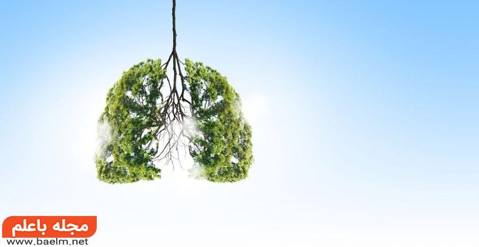 چرا و چگونه می توان هوای سالمی را تنفس کرد؟