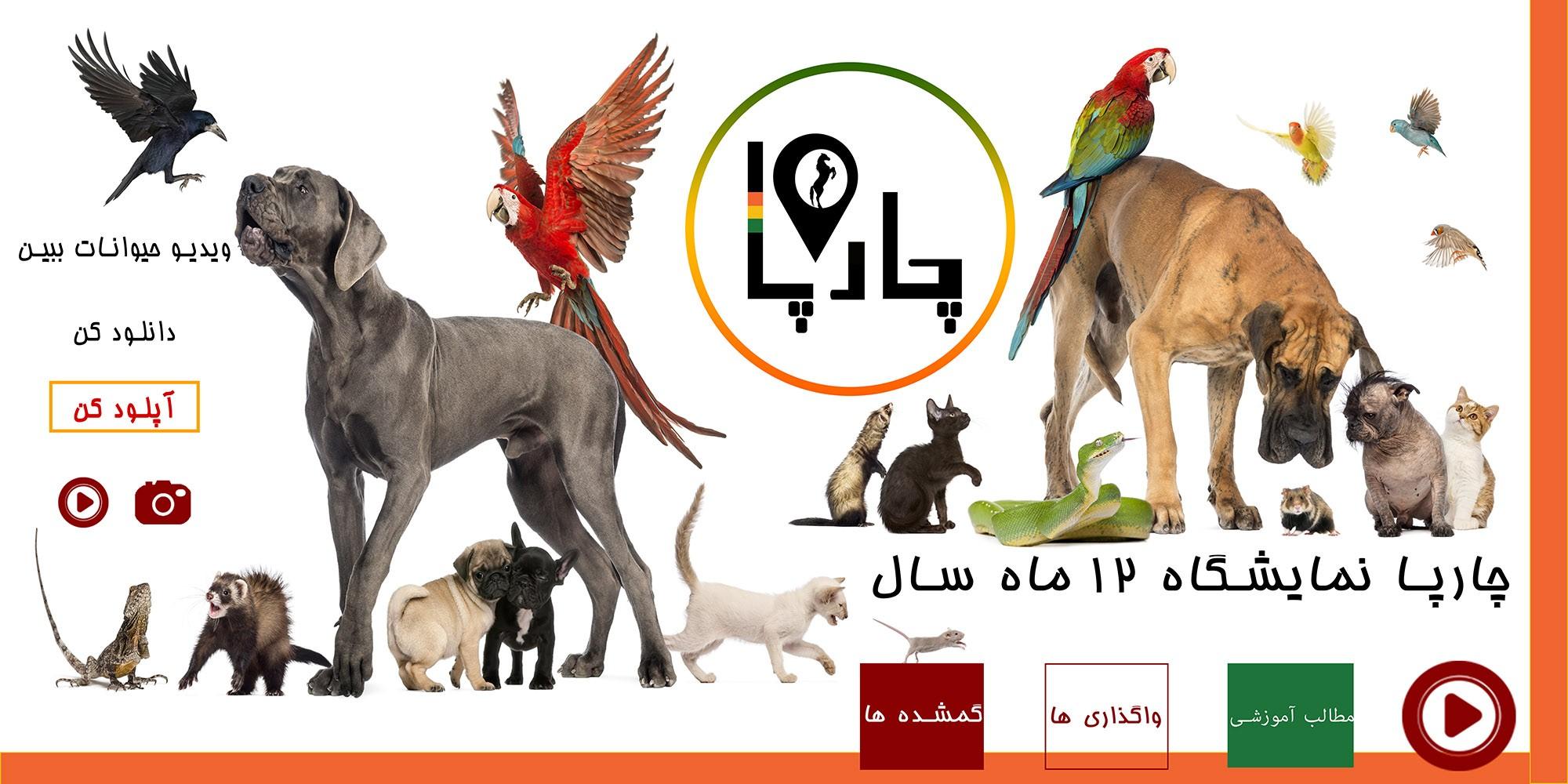چارپا در خرید و فروش حیوانات در وب سایت های مطرح کشور های توسعه یافته