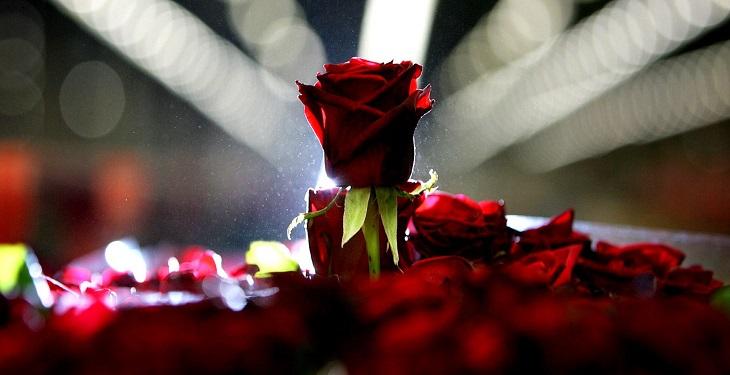 {hendevaneh.com}{سایتهندوانه}8 دلیلی که به شما می گوید چرا انسان ها به شعر احتیاج دارند - poems and love - 8 دلیلی که به شما می گوید چرا انسان ها به شعر احتیاج دارند